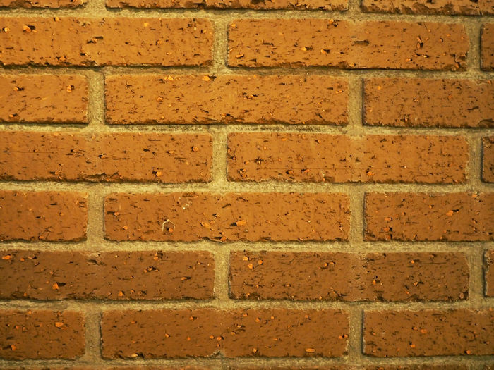 Red Brick Wall (赤いレンガの壁) Ad Copy Space Osaka-shi,Japan Red Wall Background Background Material Black Color Brick Brick Wall Brown Close-up Gray Landscape Margin Material No People No Person Nobody Outdoors Red Text Space Wall White 背景