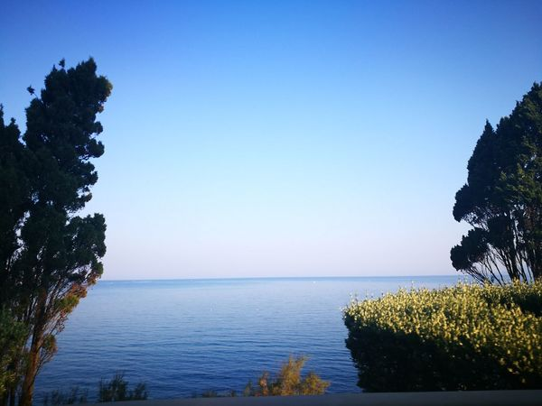 il mare dal finestrino Trees And Nature Quadronatural Elementi Naturali Colorized Beauty In Nature Point Of View Tranquility Tree Water Sea Blue Clear Sky Summer Beach Sky Horizon Over Water Landscape Coast Coastline
