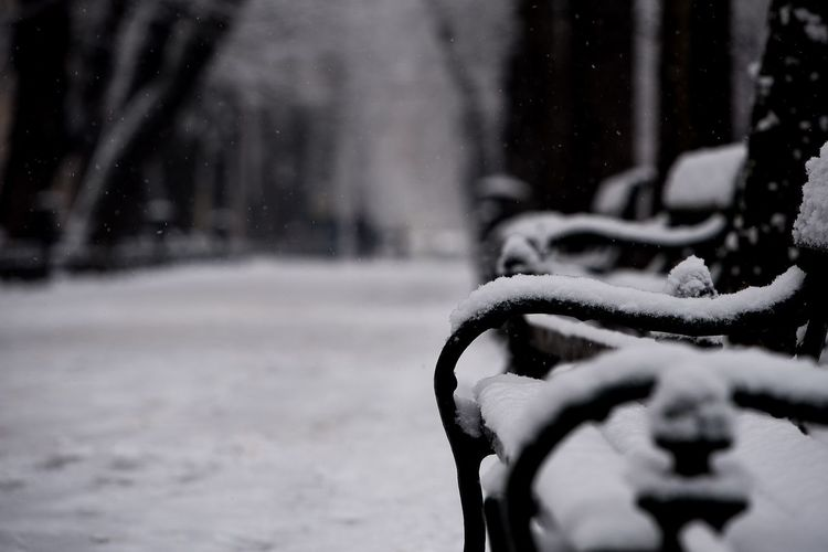 A bench in a snowing day EyeEm Selects Snow Winter Cold Temperature Weather Nature Shades Of Winter