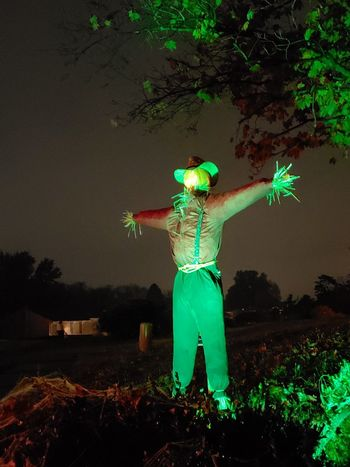 Spotlight Neighborhood Pennsylvania Scarecrow Green Color Scary Halloween Decoration Night Standing Arts Culture And Entertainment Arms Raised Arms Outstretched Trick Or Treat October Jack O' Lantern Monster - Fictional Character Pumpkin