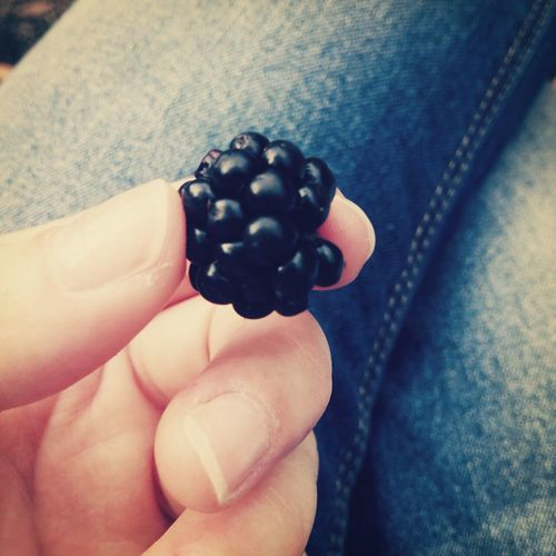 Berry Wild Berries Wild Yammy