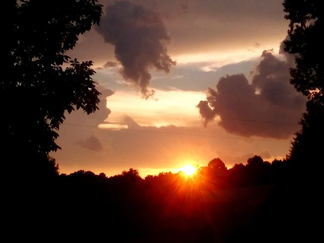 Sunsetting For The Evening Multicolored Sky Beauty In The Clouds Tree Mountain Sunset Tree Area Forest Sun Silhouette Sunlight Sunbeam Pinaceae Storm Cloud Dramatic Sky Sky Only Atmospheric Mood