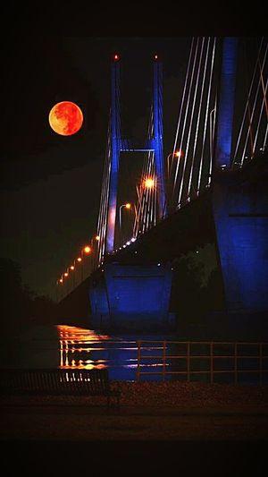 The bridge home The Week On EyeEm