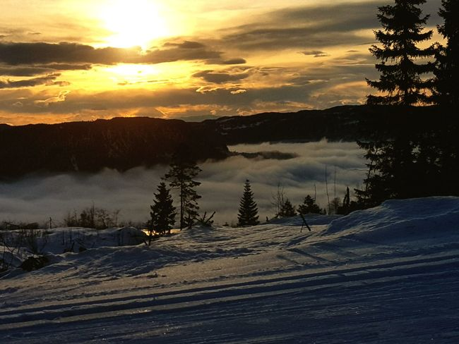 smoke on the water..fire in the sky Winter Wintertime Skiing Norway Norway🇳🇴 Ringvål Snow Sunset Pinaceae Tree Winter Forest Cold Temperature Nature Mountain Sun Landscape Sunlight Cloud - Sky Scenics Tranquil Scene Morning No People Outdoors Sky