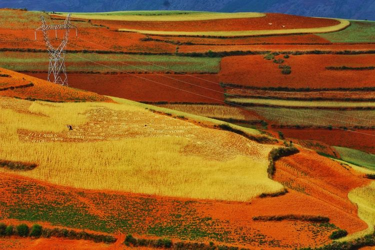 Yunnan Rural Scene Backgrounds Agriculture Multi Colored Full Frame Textured  Field Landscape Patchwork Landscape Cultivated Land Terraced Field Plantation Agricultural Field Farmland Rice Paddy