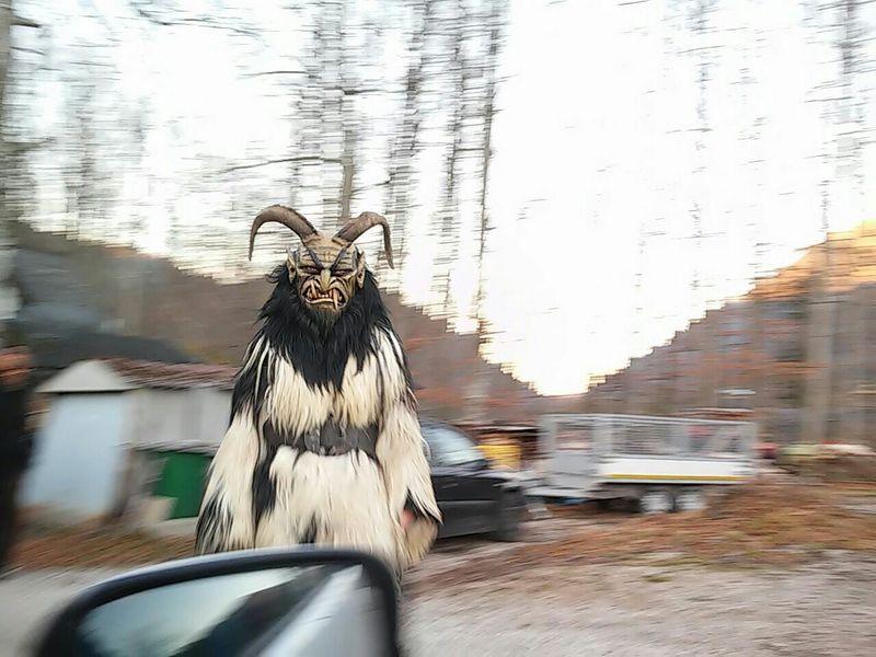 Showcase: December Creatures Of The Night Traditions Winter Creatures Lastlight Frightening