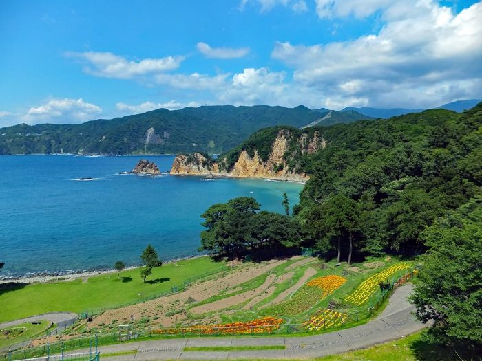 Landscape Sea And Sky Sky And Clouds Blue Sea Blue Sky Flower Flowergarden Sky Beauty In Nature Green Green Nature Japan 黄金崎 Hello World