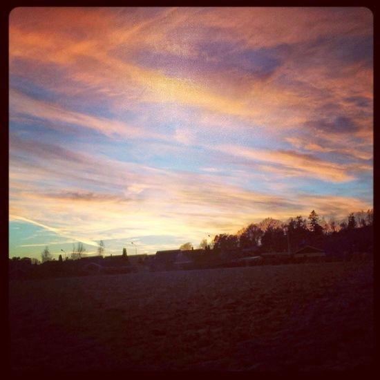 Solnedgång på fälten vid Enegärdet