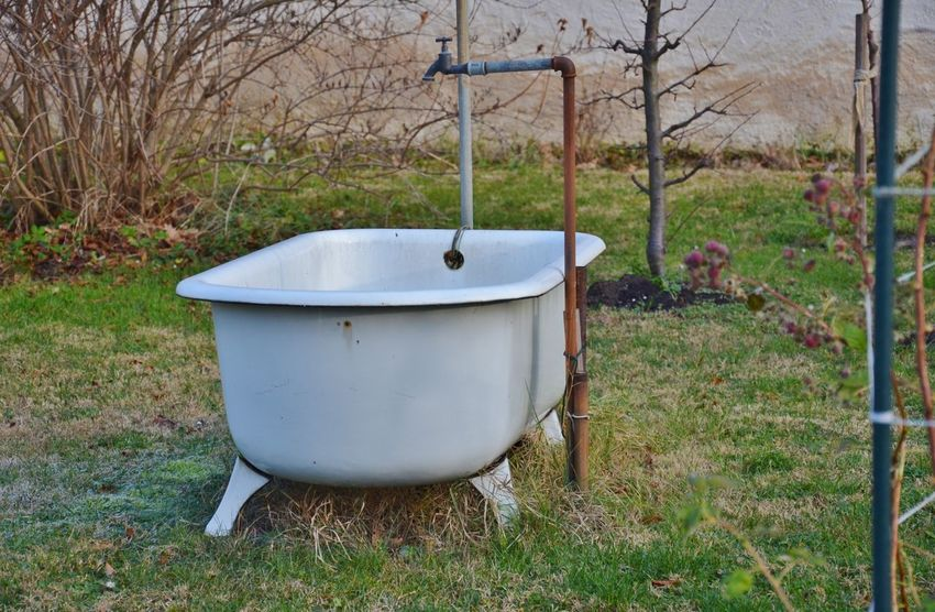 Bare Tree Bath Tub Day Field Garden Garden Photography Grass Growth Nature No People Outdoors Stand Pipe Tree