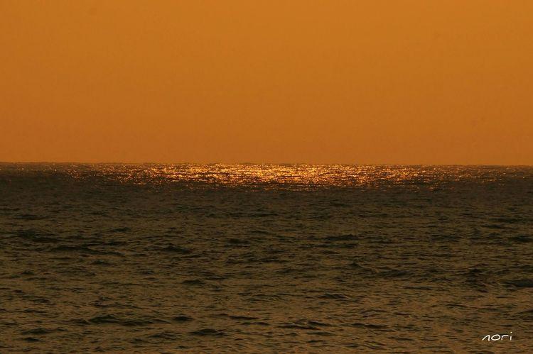 光る海✨~ Shining sea~ ここ☝に陽が沈みます☺👌夕暮れふぇち Sea Sea And Sky EyeEm Nature Lover キラキラ *CHIE* いつもの場所 Sunset Sunset_collection Kagoshima