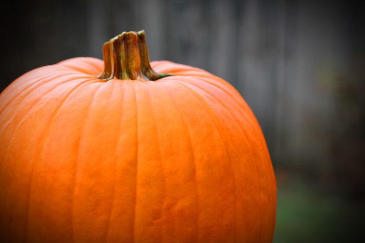 Tennessee Days Pumpkin Pumpkins EyeEm Selects EyeEmNewHere Pumpkin Halloween Autumn Vegetable No People Food Food And Drink Squash - Vegetable Freshness Jack O' Lantern Close-up Day