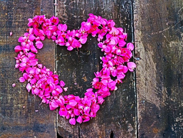 Directly above shot of pink heart shaped flowers on wooden door