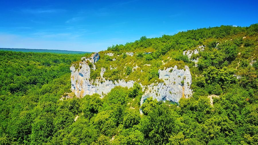 Grottesdescelero