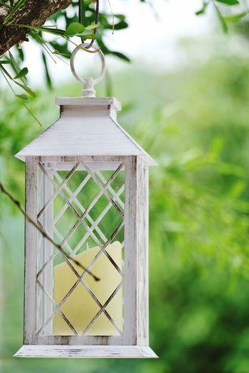 Out Door Lamp.
