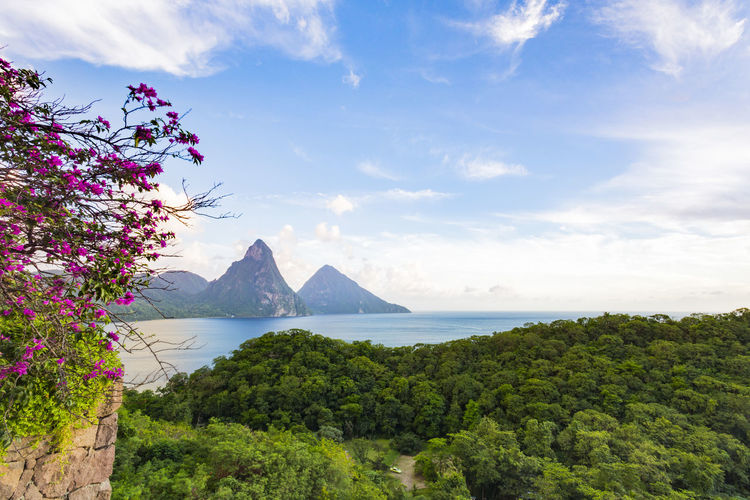 Pitons from Jade Mountain Resort, Saint Lucia Beauty In Nature Cloud - Sky Day Growth Mountain Nature No People Outdoors Scenics Sea Sky Tranquil Scene Tranquility Tree Water