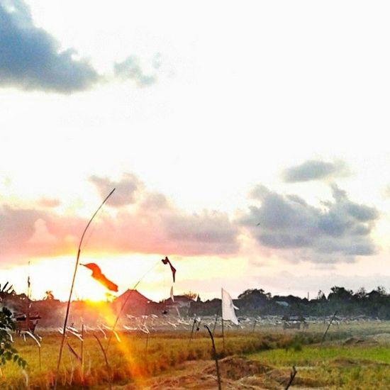 goldie Sunrise Instasunrise Sunrisespecialist Photooftheday Picoftheday Landscape Instalandscape Instasky Skymadness Instanesia Instagood Instadaily Sky Instahdr HDR Instanusantarabali Instanusantara Bali INDONESIA LangitbaliPhotoworks
