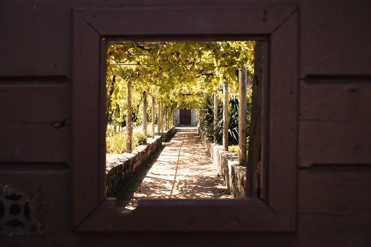 Hidden Garden