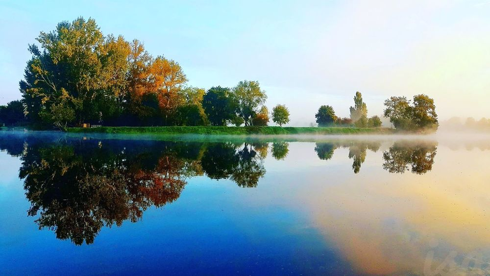 Reflection Water Tree Lake Nature Symmetry Outdoors Sky No People Beauty In Nature Day Scenics Beauty In Nature Nature Picoftheday Douceur Région CentreSavonnieres Fleuve Touraine Lanscape Photography France 🇫🇷 Indreetloire