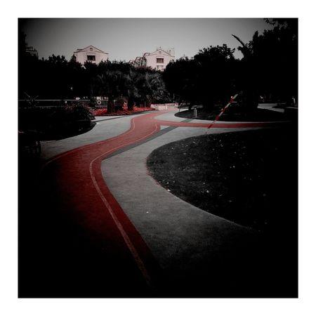 Road Red Color Autumn Colors City Street House Autumn Leaves 上海.中国 秋天 City 南园滨江绿地 Vignette Art Vignette 秋色 Shanghai, China Autumn CityLifeStyle Outdoors