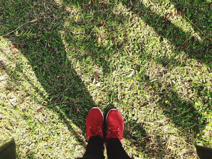 red shoes!! green grass Eyeemnature Eyeemshoes EyeEmlights Eyeemsports Low Section Standing Human Leg Shoe Directly Above High Angle View Shadow Sunlight Grass Human Feet Feet Human Foot Funny Human Single Free Time Daylight