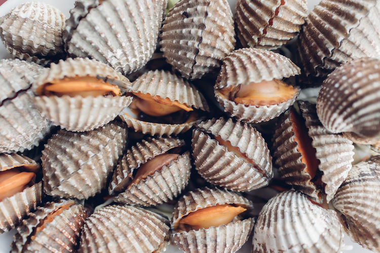 Closeup of fresh cockles in thailand. fresh market.