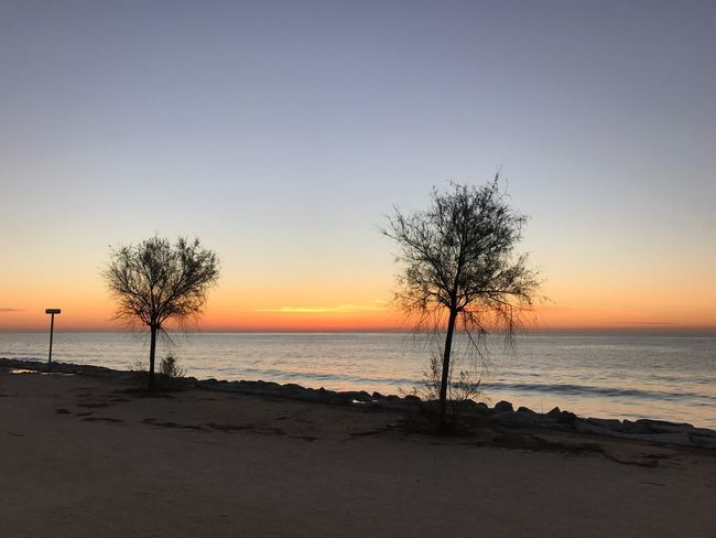 Sea Sunset Nature Water Beauty In Nature Scenics Horizon Over Water Tree Tranquil Scene Beach Tranquility Sky No People Outdoors Maresme