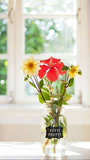 Flowers in jar on table