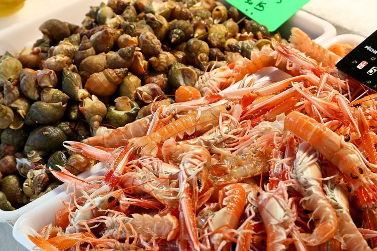 High angle view of shrimps and seashells in container at market stall