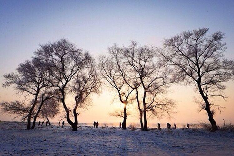 Deepfreeze Snow Photography First Eyeem Photo Hello World Enjoying Life 凍死⋯