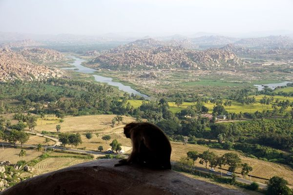 Hampi  Nature Miles Away India Monkey Valley Greenery Landscape Sony A6000 Tourist Hills Aerial Shot 2016 Scenics Ruins Point Of View History Monkeytemple History Through The Lens  Flying High Break The Mold The Great Outdoors - 2017 EyeEm Awards Live For The Story Lost In The Landscape