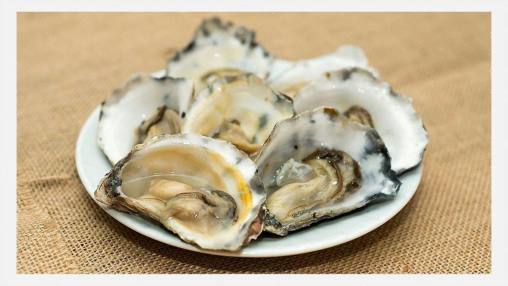 sydney freshly shucked oysters Sydney Foodporn Australia Oysters