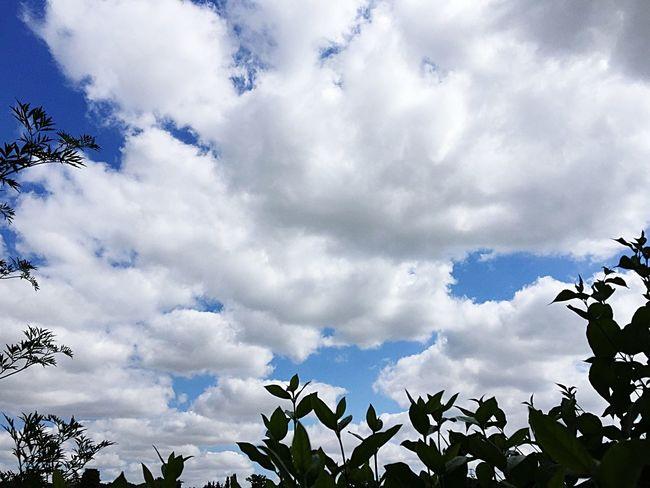 Aerial Shot CIELFIE Skyfie Sky Ciel Ciel Et Nuages Clouds