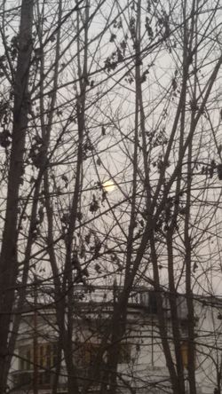 Search the Moon Beauty In Nature India Locate The Moon Monochrome Moon Rise Nature Outdoors Sky White Beauty Winter Evening Wither