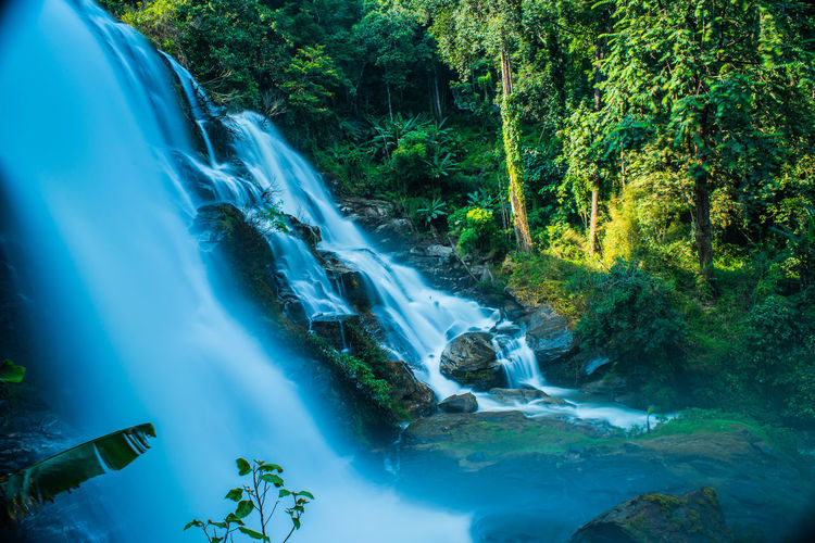 Wonderful waterfall in close national park Beauty In Nature Blurred Motion Day Flowing Water Forest Green Color Growth Long Exposure Motion Nature No People Outdoors River Rock - Object Scenics Tranquil Scene Tranquility Tree Water Waterfall