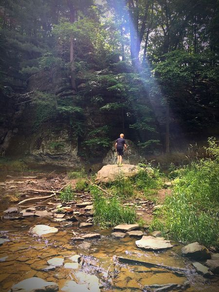 EyeEM Photos Live For The Story Rocks Pewits Nest Water Kid Boy Teenager Green Tree Trees Sun Rays Ray Of Light Sommergefühle Lost In The Landscape