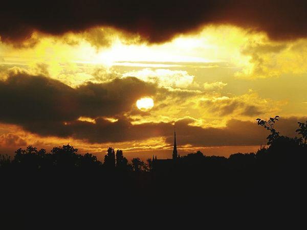 Sunset Tree Nature Outdoors Cloud - Sky No People Beauty In Nature Tree Area Scenics Tranquility Cathédrale D'Amiens Cathédrale Notre-dame D'amiens Couchédusoleil Hautdefrance