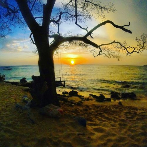 Sunset Sea Beach Horizon Over Water Scenics Tranquility Outdoors Nature