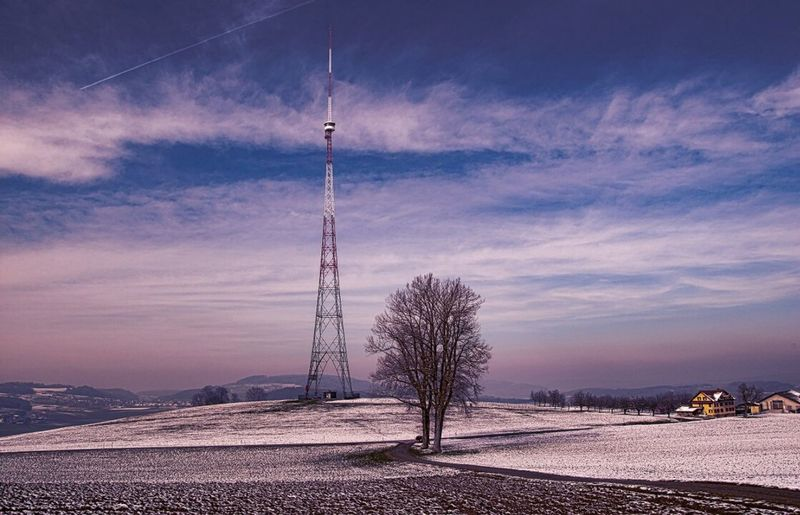 Cloud - Sky Tree Sky No People Electricity  Outdoors Nature Scenics Beauty In Nature Technology Electricity Pylon Landscape Day
