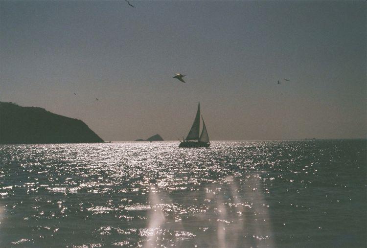 Sail away. Sailing Sea Enjoying Life Boat