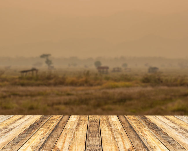 Boardwalk on landscape against sky during sunset