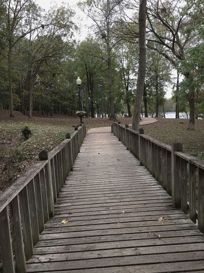 A nature path on a dreary, rainy day.