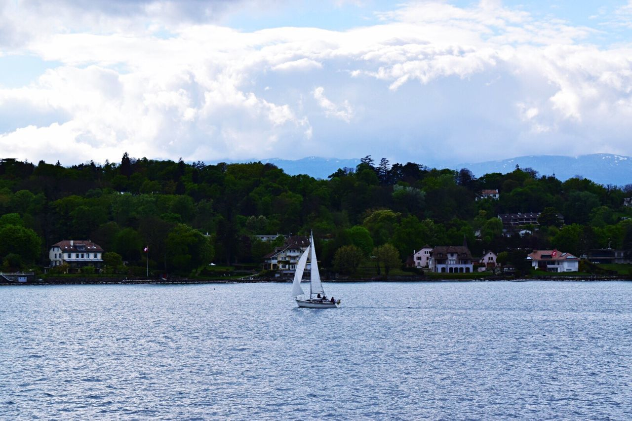 sky, cloud - sky, water, nautical vessel, nature, tree, sea, waterfront, outdoors, no people, day, sailing, built structure, architecture, rippled, sailboat, transportation, beauty in nature, building exterior, scenics, mountain, mast, yacht, animal themes