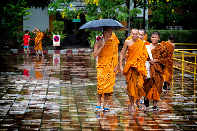 Chiang Mai Day Happy People Monks Monks Walking Protection Rain Rain Real People Religion South East Asia Temple Thailand Traditional Clothing Travel Travel Desinations Umbrella Walking Water Wet