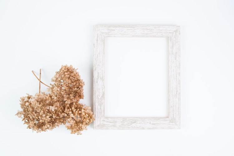 Floral Frame Hydrangea Minimalism Mock Up Mockup No People Rustic Simple Simplicity Stock Photo Stock Photography Styled Stock White Background