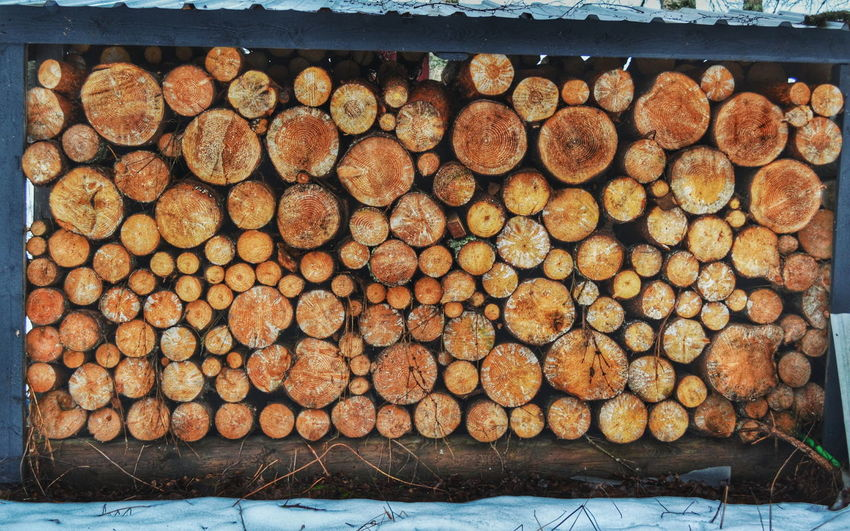 Tree Trees Symmetry Stack Taking Photos Check This Out Cool Pile Of Wood VSCO Vscocam VSCO Cam Vscophile Piled Up