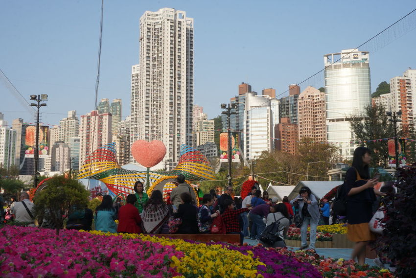 Bees And Flowers City Park Nature Sky And Clouds Skyscrapers Skyscrapers In The Clouds Stories From The City Bee Flower Festival 2018 Flowers Peak Peak Tram Sunset