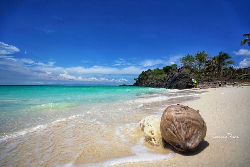 Lampinigan Island Beachphotography Beauty In Nature Beach Beach Photography Beach Life Island Island Hopping Philippines Photos Philippines Philippine Beaches Water Sea Sea Life Swimming Beach Beauty Coconut Palm Tree
