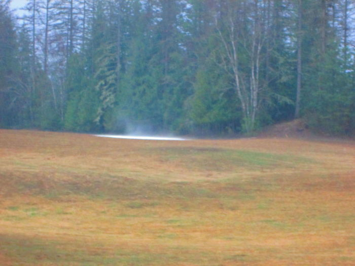 Backyard Fields Moisture Moving