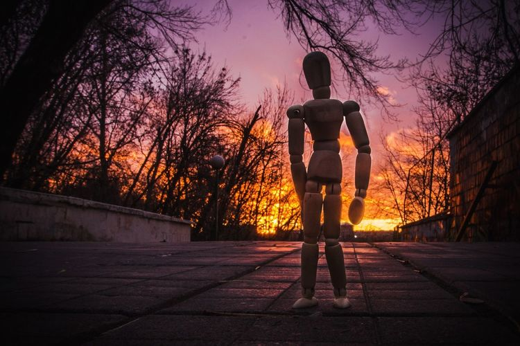 Creative Figurine  Moscow Woodyforest Sunset Full Length Silhouette One Person Standing Rear View Tree Sky Night Outdoors Nature