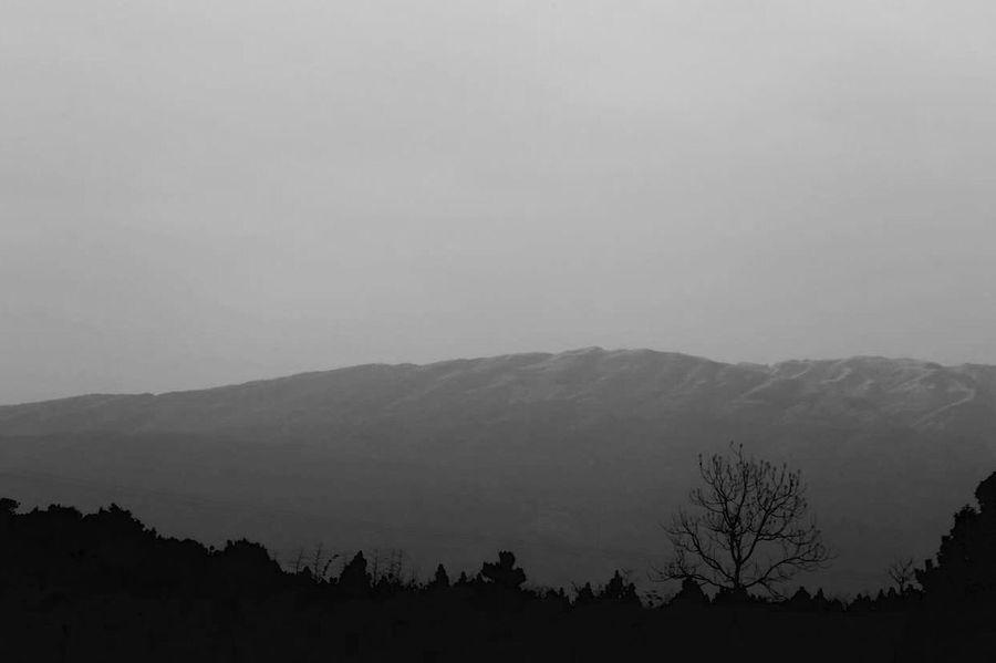 黑白 山 雪 苍凉